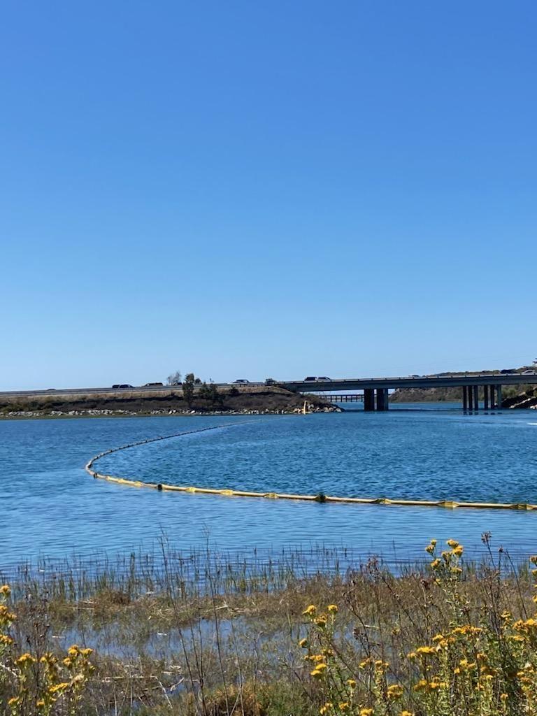 Boom is shown at San Dieguito Lagoon
