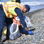 UPDATE 13: The Unified Command continues its response Monday to the coastal oil spill in Orange and San Diego Counties